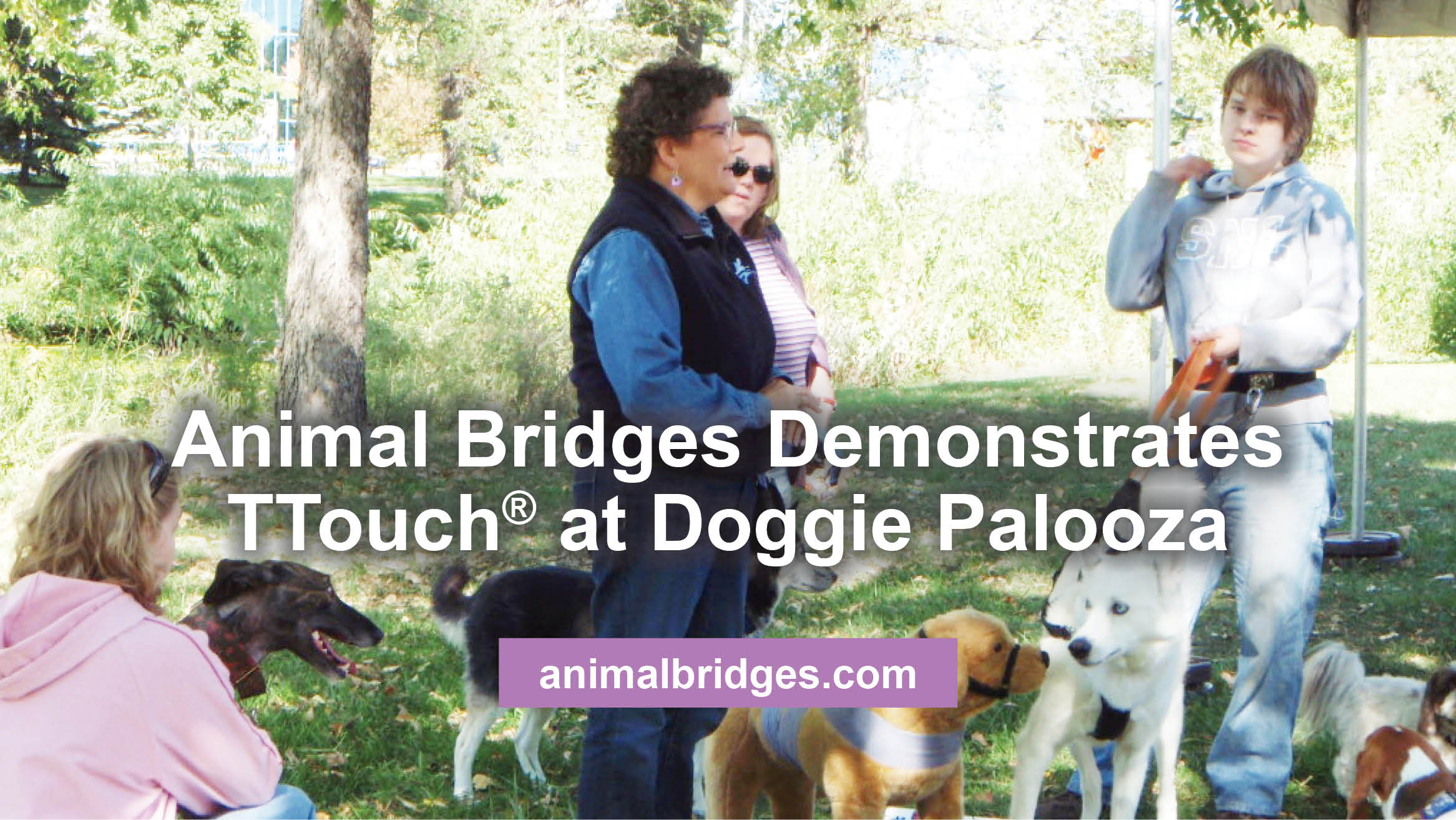 Animal Bridges Demonstrates TTouch® at Doggie Palooza