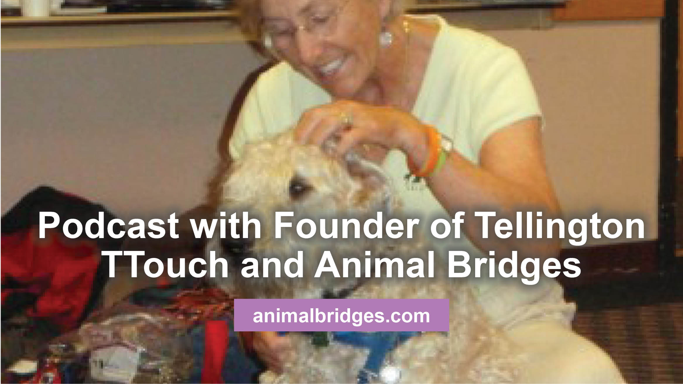 Podcast with Founder of Tellington TTouch and Animal Bridges