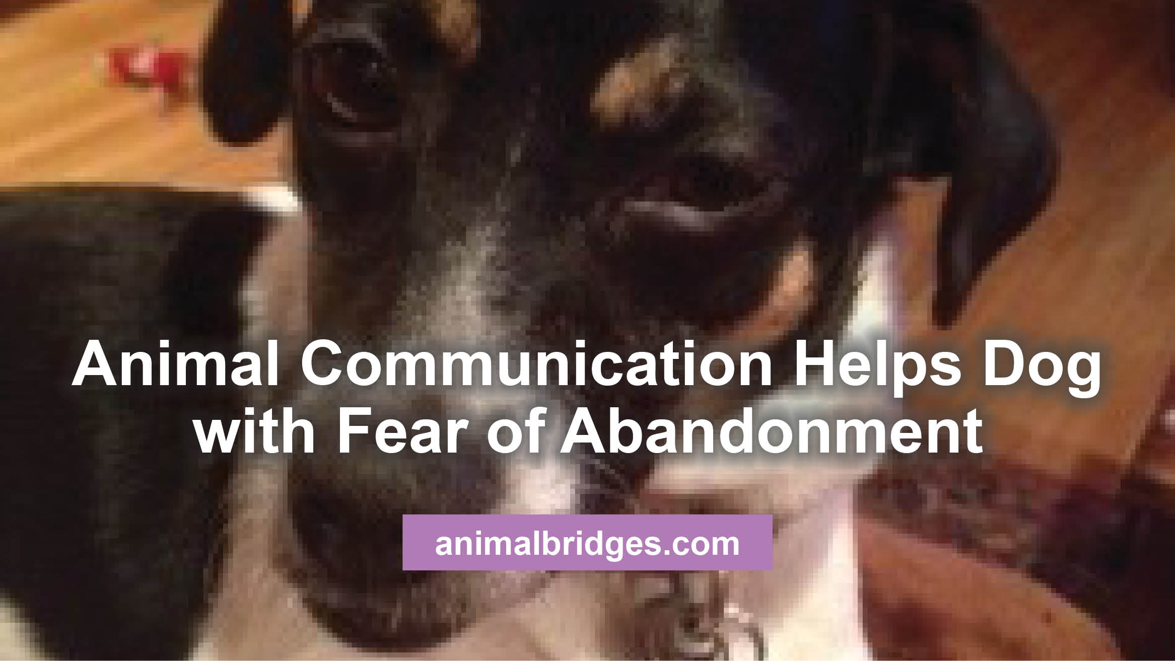 fear-of-abandonment