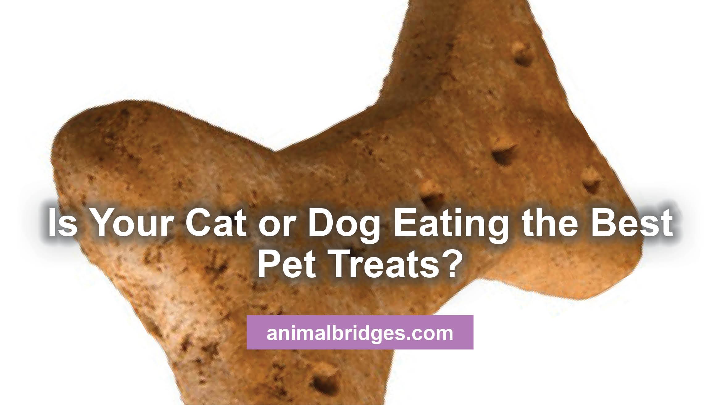 pet-treats