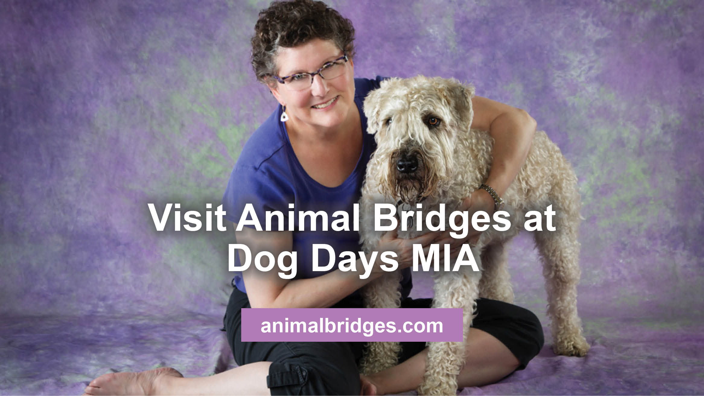 Visit Animal Bridges at Dog Days MIA
