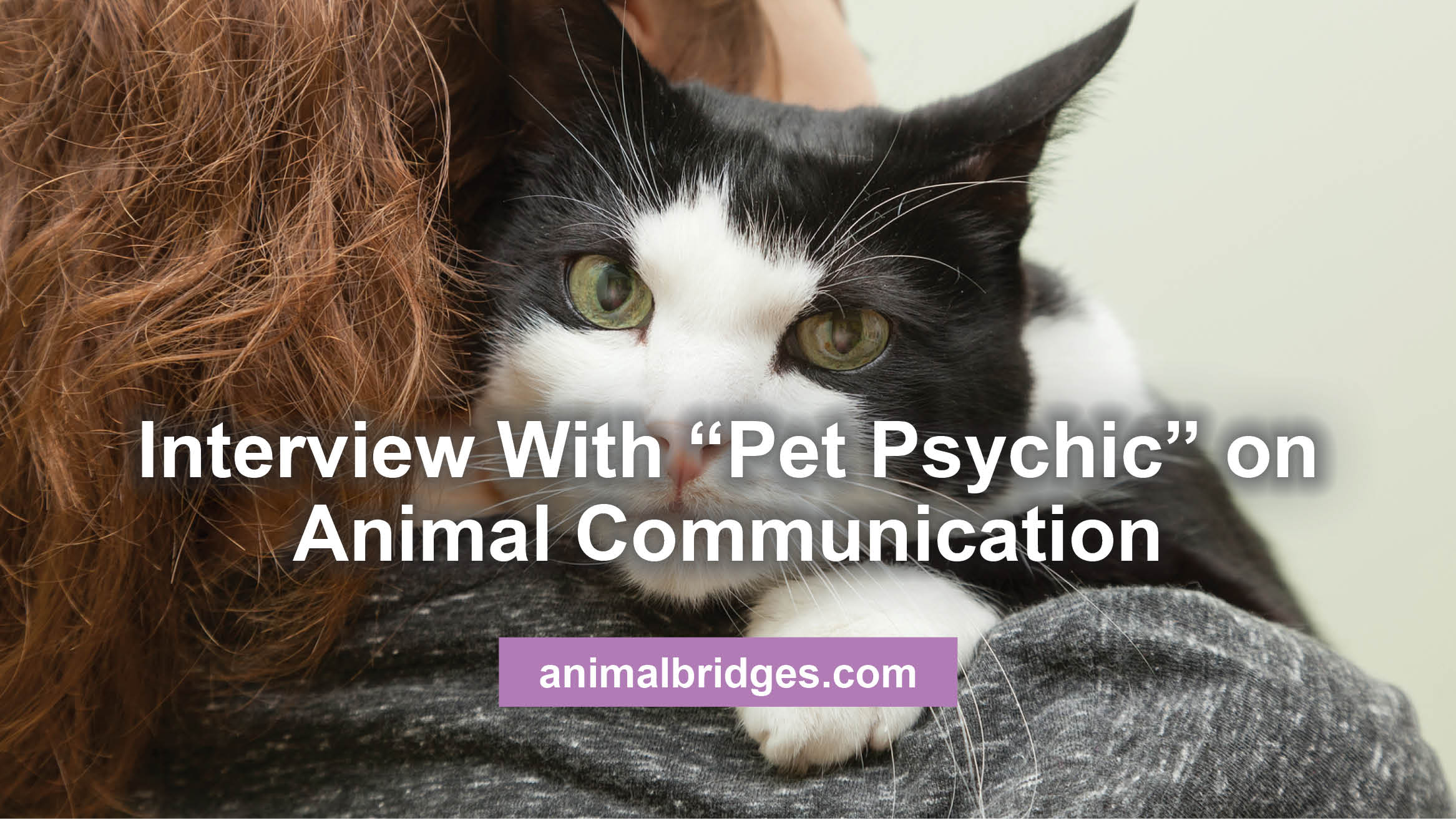 "Interview With ""Pet Psychic"" on Animal Communication"