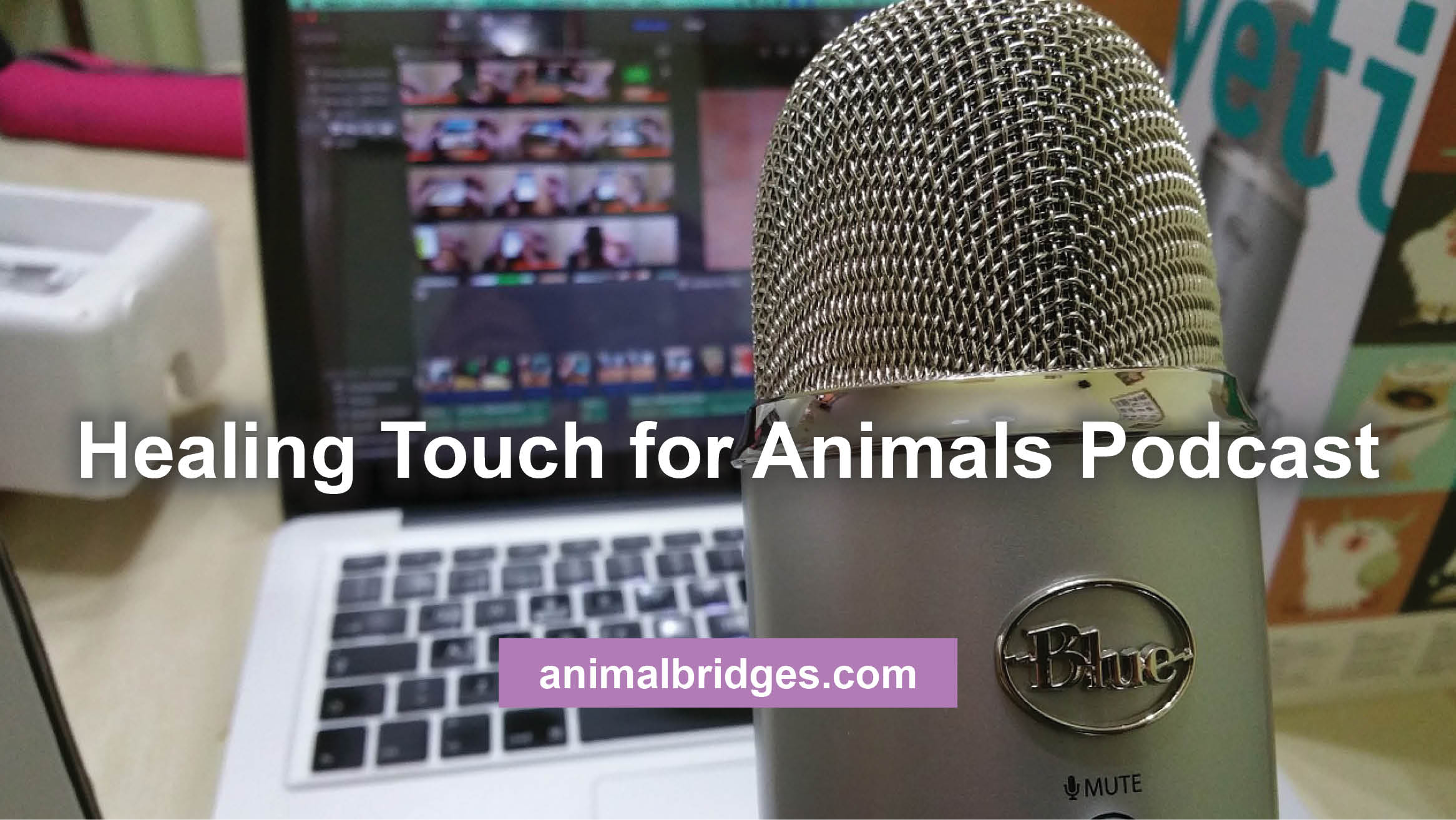 Healing Touch for Animals Podcast