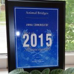 Animal Bridges Award