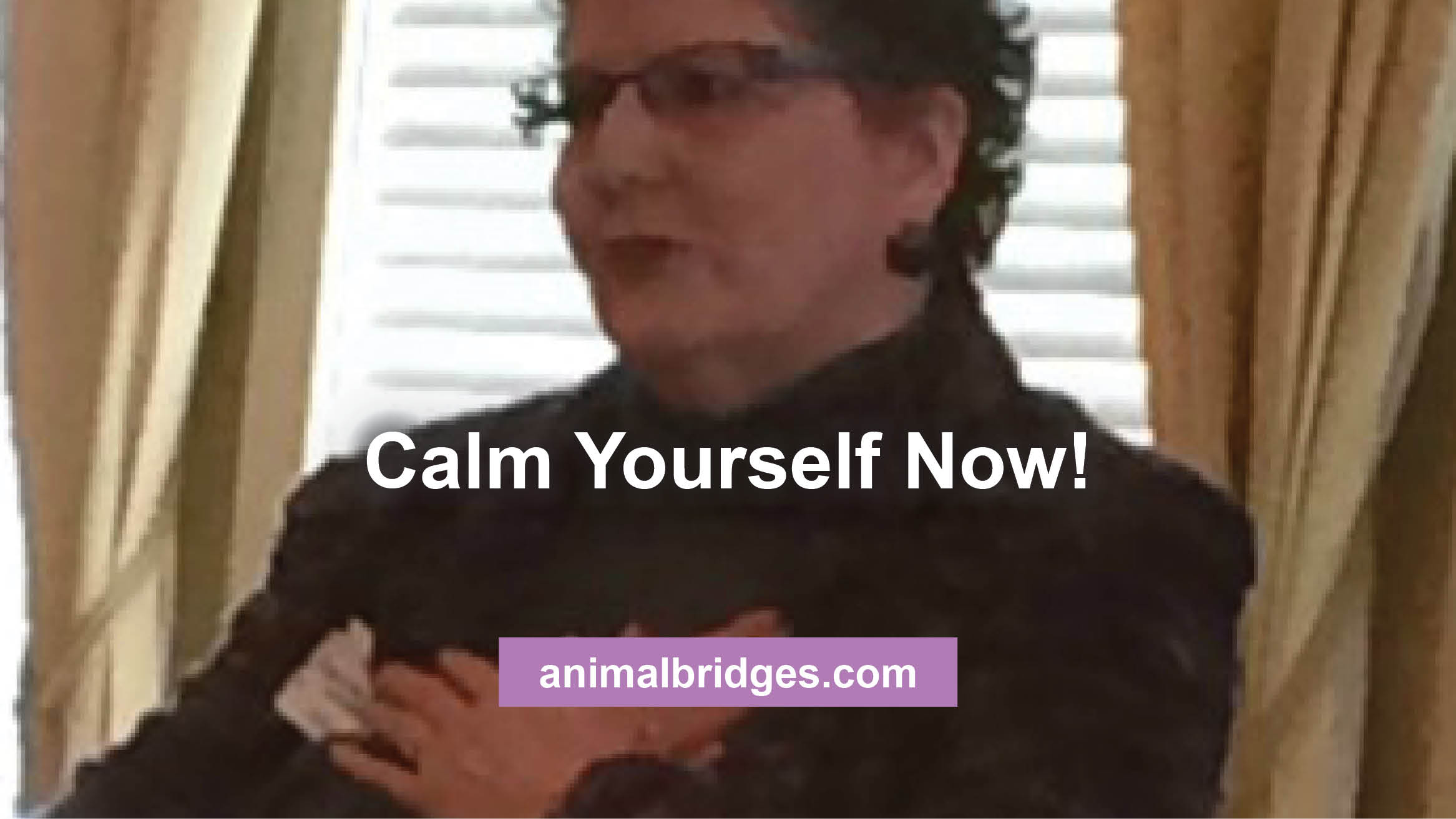 calm-yourself-now