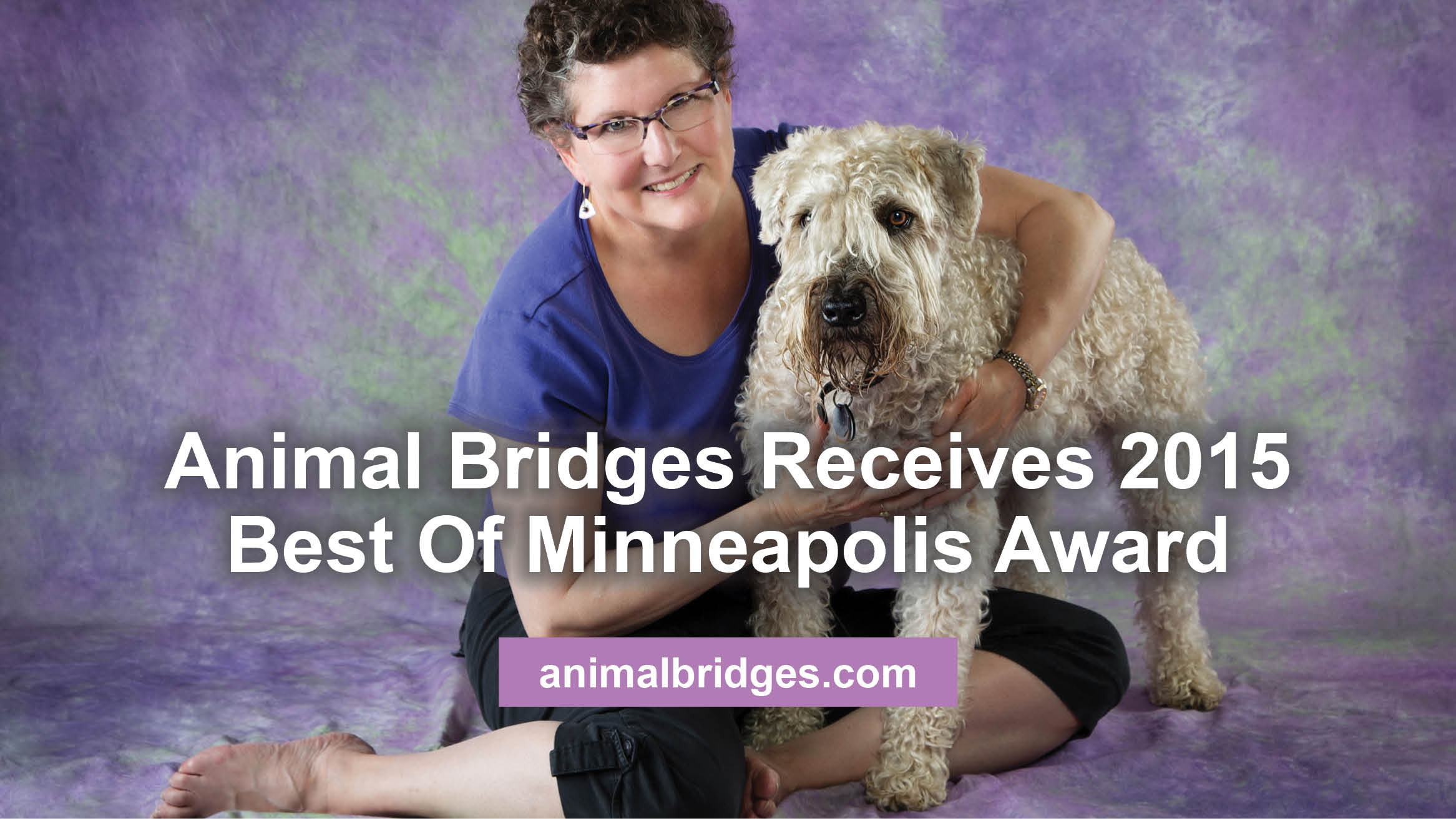 Animal Bridges Receives 2015 Best Of Minneapolis Award