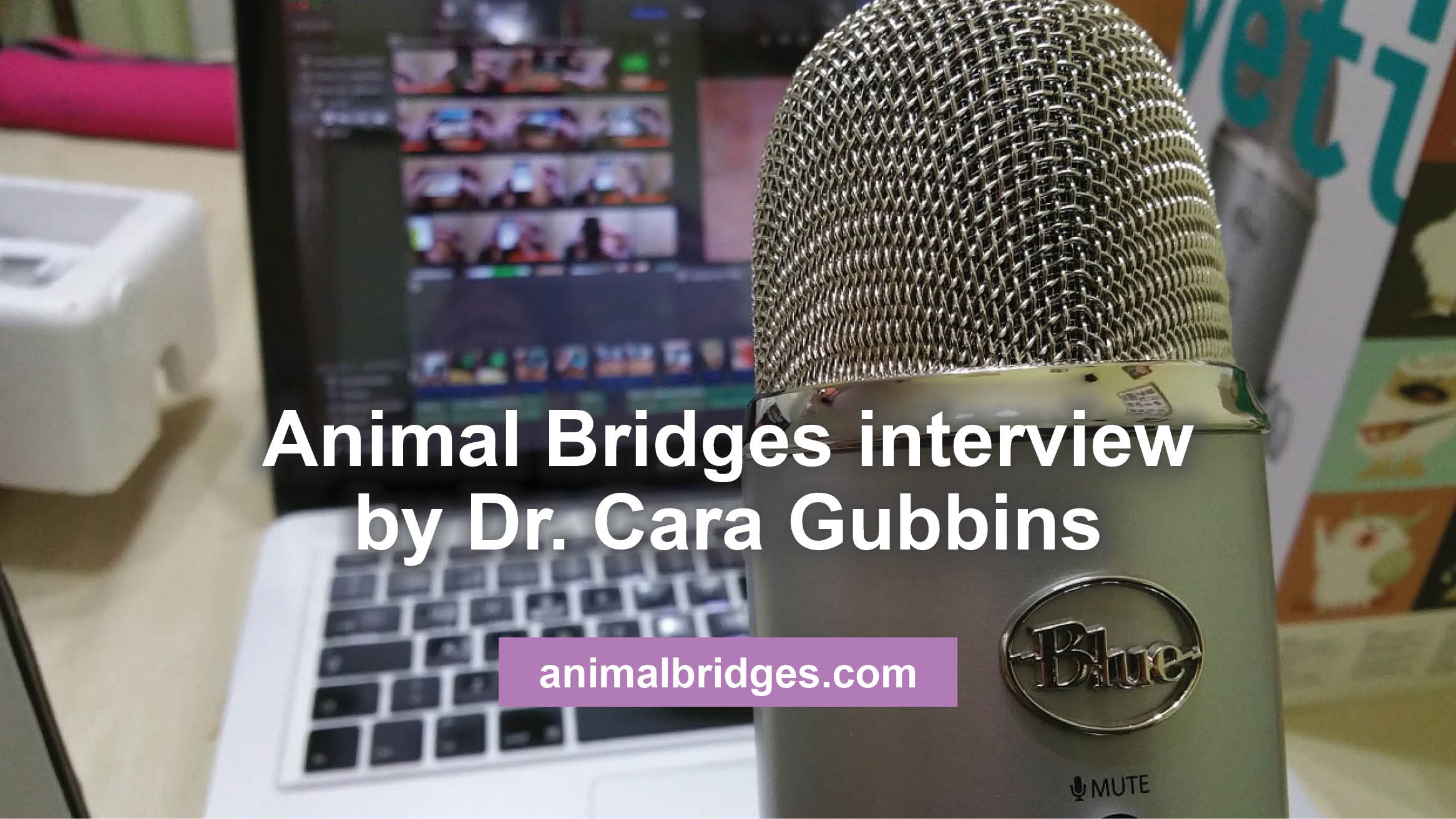 Animal Bridges interview by Dr. Cara Gubbins on April 6, 2016