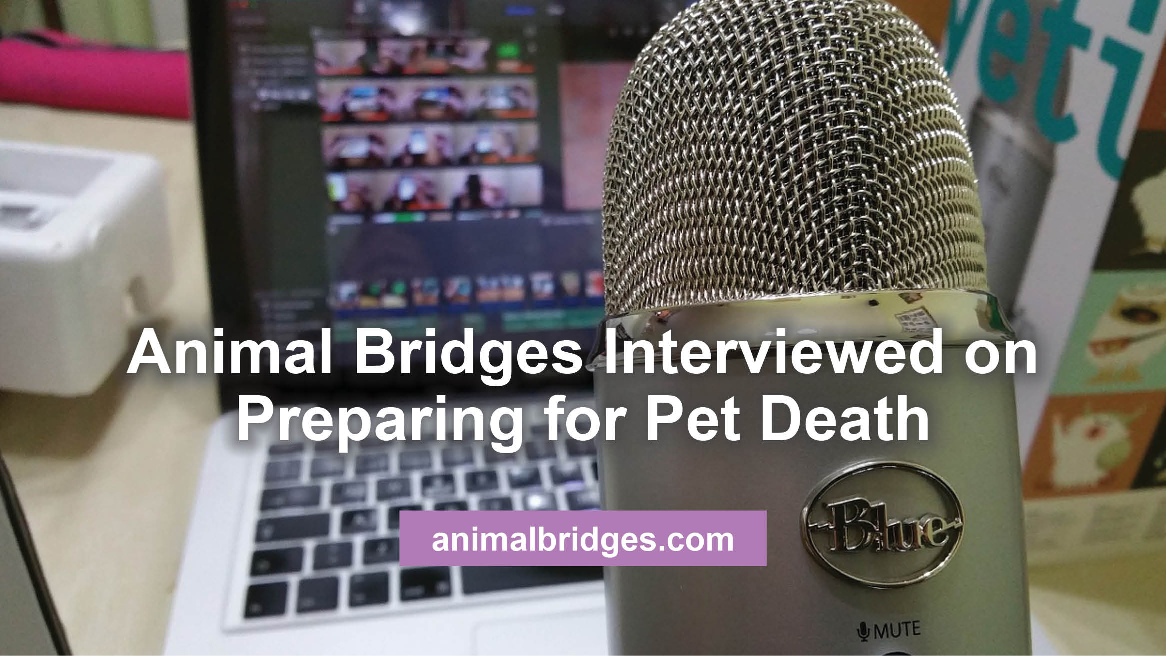 Preparing for pet death.