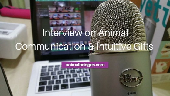 Interview on Animal Communication and Intuitive Gifts