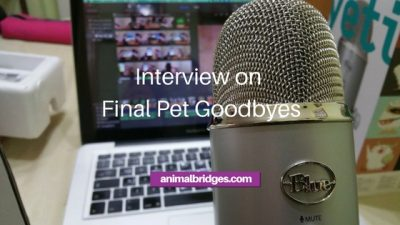 Final pet goodbyes